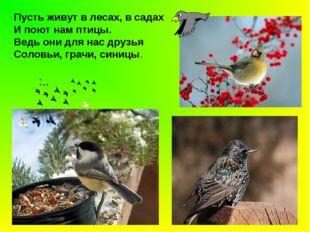 Пусть живут в лесах, в садах И поют нам птицы. Ведь они для нас друзья Соловь