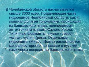 В Челябинской области насчитывается свыше 3000 озёр. Подавляющая часть гидрон