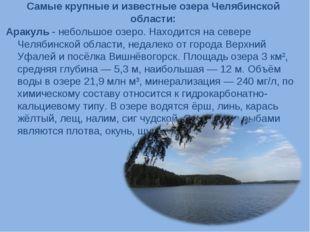 Самые крупные и известные озера Челябинской области: Аракуль - небольшое озер