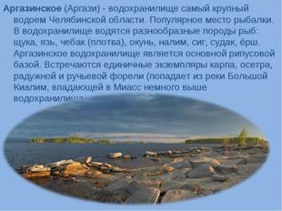 Аргазинское (Аргази) - водохранилище самый крупный водоем Челябинской области