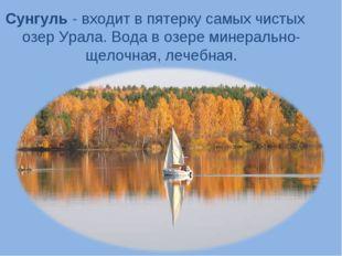 Сунгуль - входит в пятерку самых чистых озер Урала. Вода в озере минерально-щ