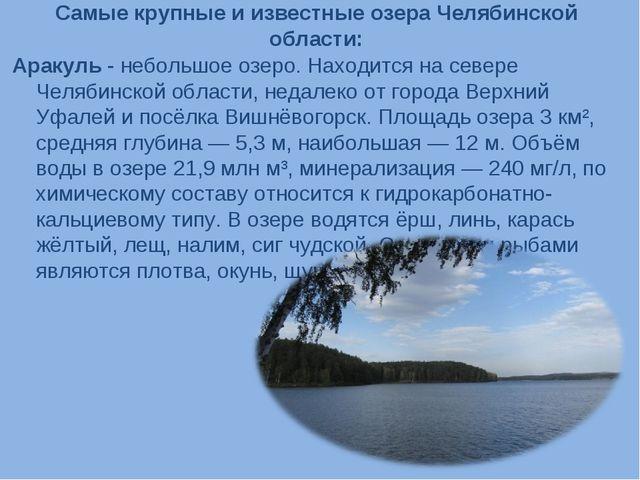 Самые крупные и известные озера Челябинской области: Аракуль - небольшое озер...