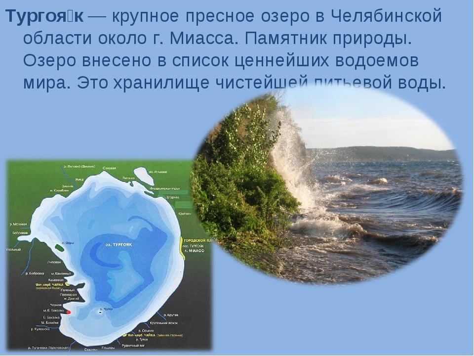 Тургоя́к — крупное пресное озеро в Челябинской области около г. Миасса. Памят...