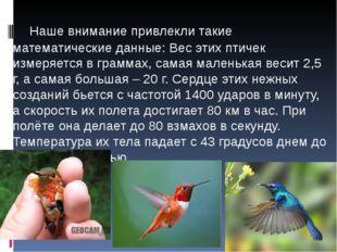 Наше внимание привлекли такие математические данные: Вес этих птичек измеряе