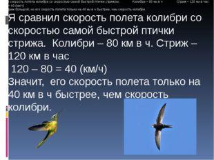 Я сравнил скорость полета колибри со скоростью самой быстрой птички стрижа.