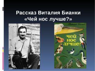 Рассказ Виталия Бианки «Чей нос лучше?»