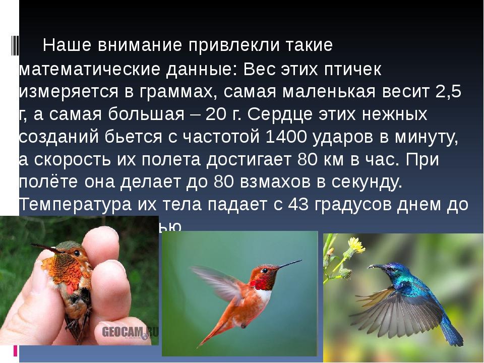 Наше внимание привлекли такие математические данные: Вес этих птичек измеряе...