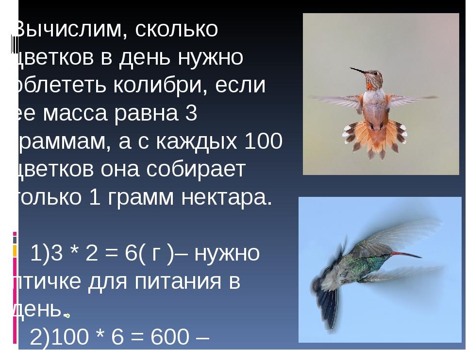 Вычислим, сколько цветков в день нужно облететь колибри, если ее масса равна...