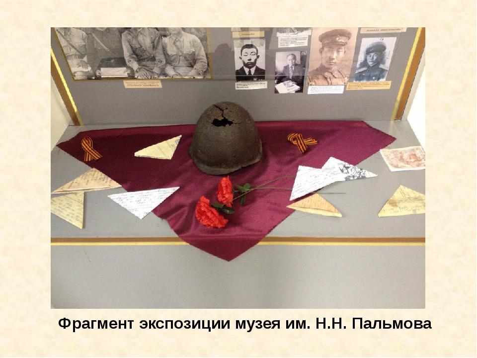 Фрагмент экспозиции музея им. Н.Н. Пальмова