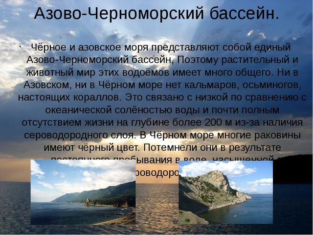 Азово-Черноморский бассейн. Чёрное и азовское моря представляют собой единый...