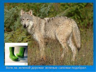 Волк на зеленой дорожке зеленые сапожки подобрал.