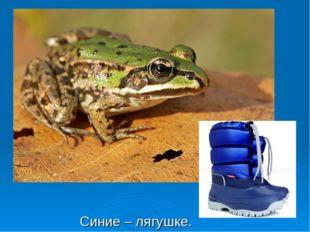 Синие – лягушке.