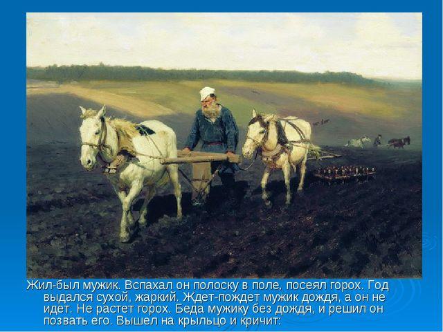 Жил-был мужик. Вспахал он полоску в поле, посеял горох. Год выдался сухой, жа...