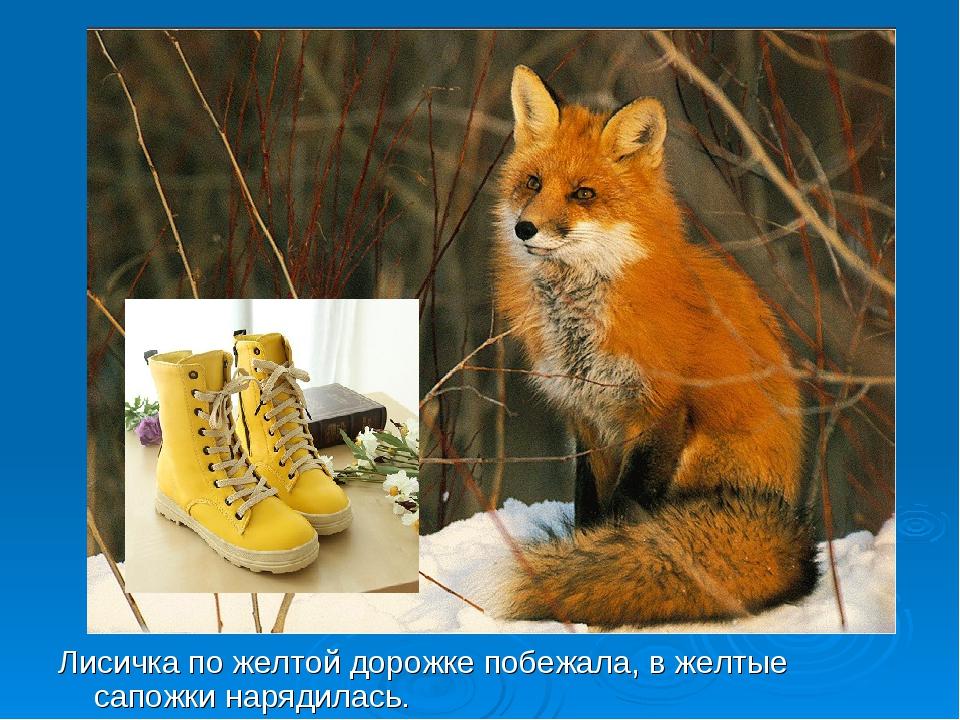 Лисичка по желтой дорожке побежала, в желтые сапожки нарядилась.