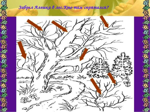 Забрел Алешка в лес.Кто там спрятался?