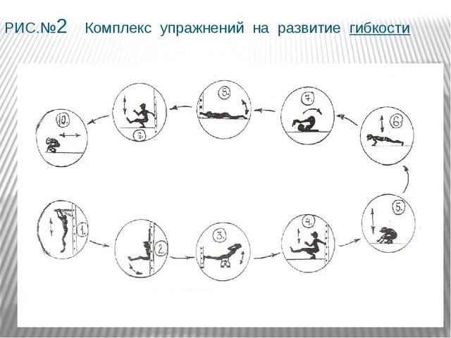 РИС.№2 Комплекс упражнений на развитие гибкости