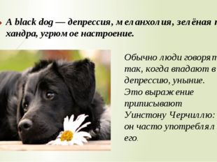 A black dog — депрессия, меланхолия, зелёная тоска, хандра, угрюмое настроени
