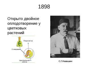 1898 Открыто двойное оплодотворение у цветковых растений С.Г.Навашин Сергей Г