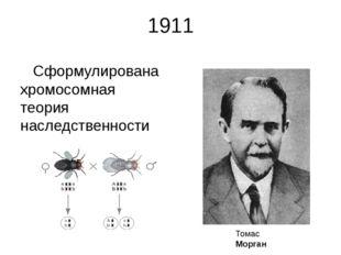 1911 Сформулирована хромосомная теория наследственности Томас Морган Томас Ге