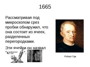 1665 Рассматривая под микроскопом срез пробки обнаружил, что она состоит из я