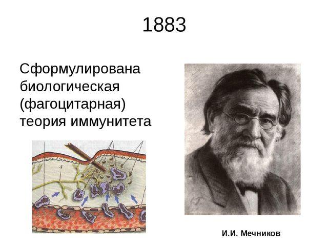 1883 Сформулирована биологическая (фагоцитарная) теория иммунитета И.И. Мечни...