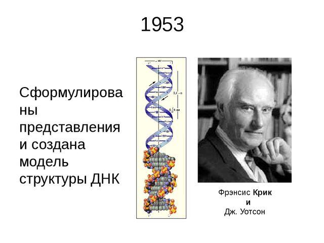 1953 Сформулированы представления и создана модель структуры ДНК Фрэнсис Крик...