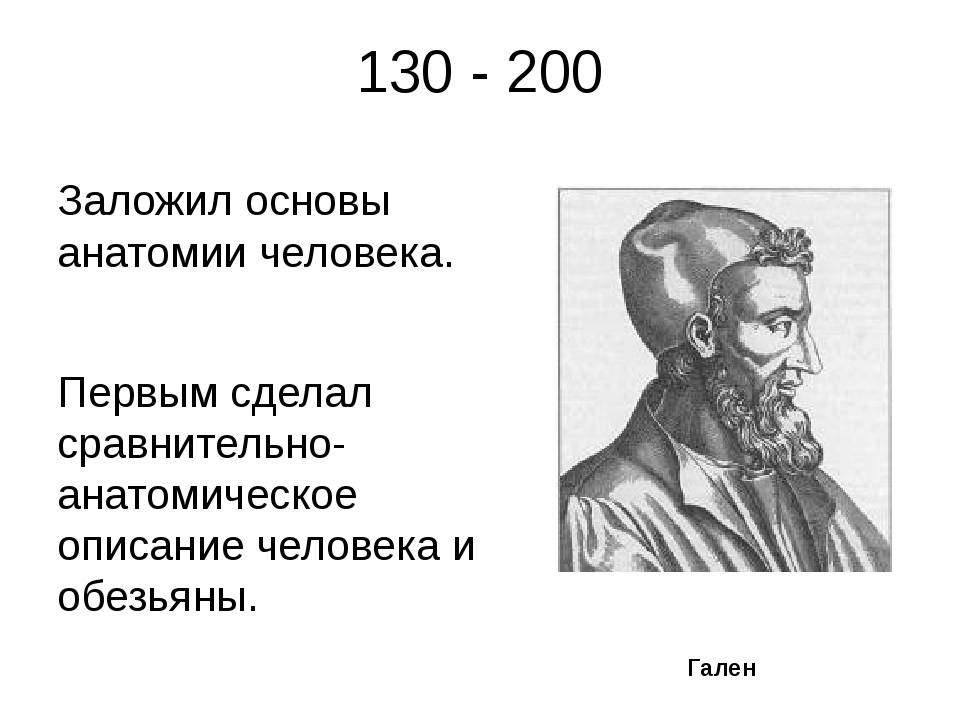 130 - 200 Заложил основы анатомии человека. Первым сделал сравнительно- анато...