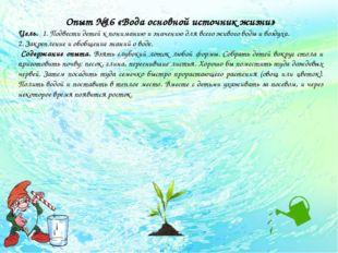 Опыт №16 «Вода основной источник жизни» Цель. 1. Подвести детей к пониманию