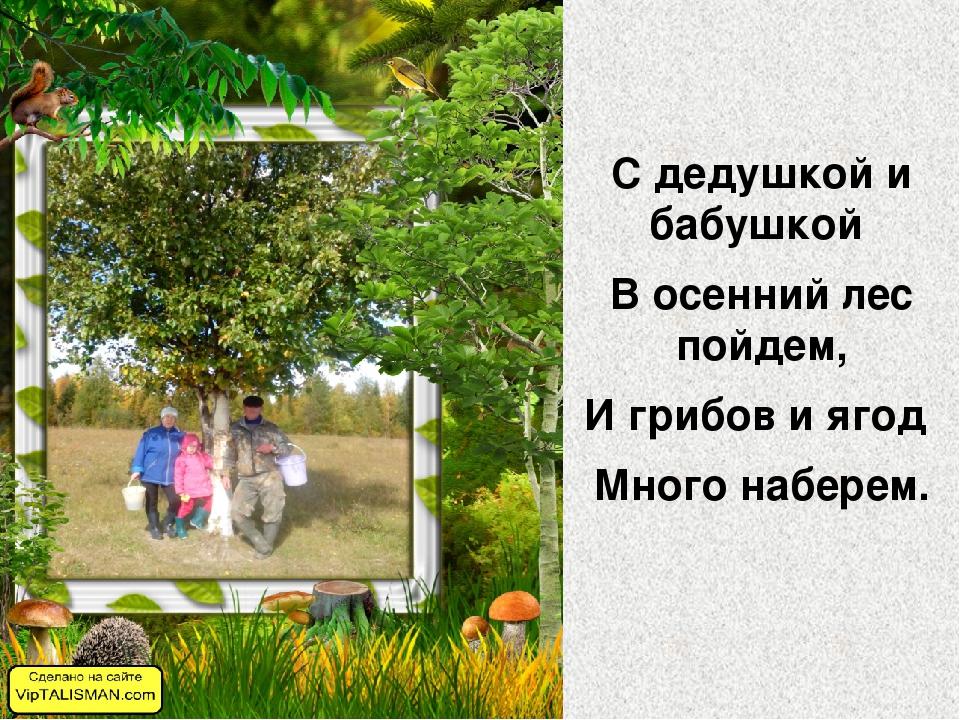 С дедушкой и бабушкой В осенний лес пойдем, И грибов и ягод Много наберем.