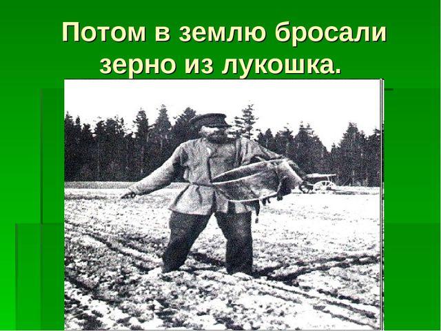Потом в землю бросали зерно из лукошка.