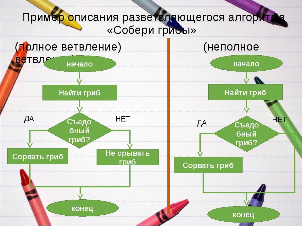 Пример описания разветвляющегося алгоритма «Собери грибы» (полное ветвление)...