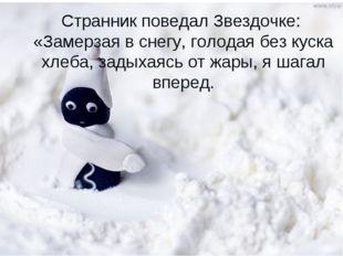 Странник поведал Звездочке: «Замерзая в снегу, голодая без куска хлеба, задых