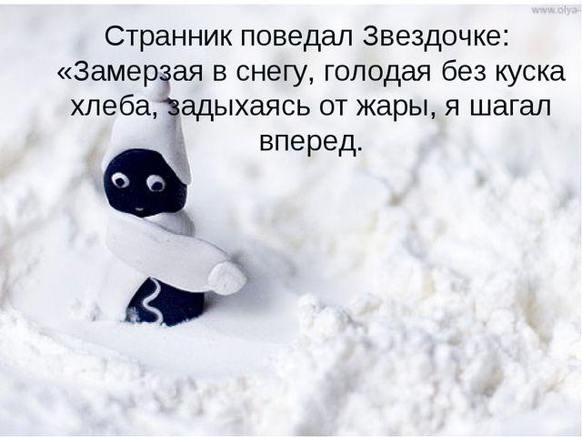 Странник поведал Звездочке: «Замерзая в снегу, голодая без куска хлеба, задых...