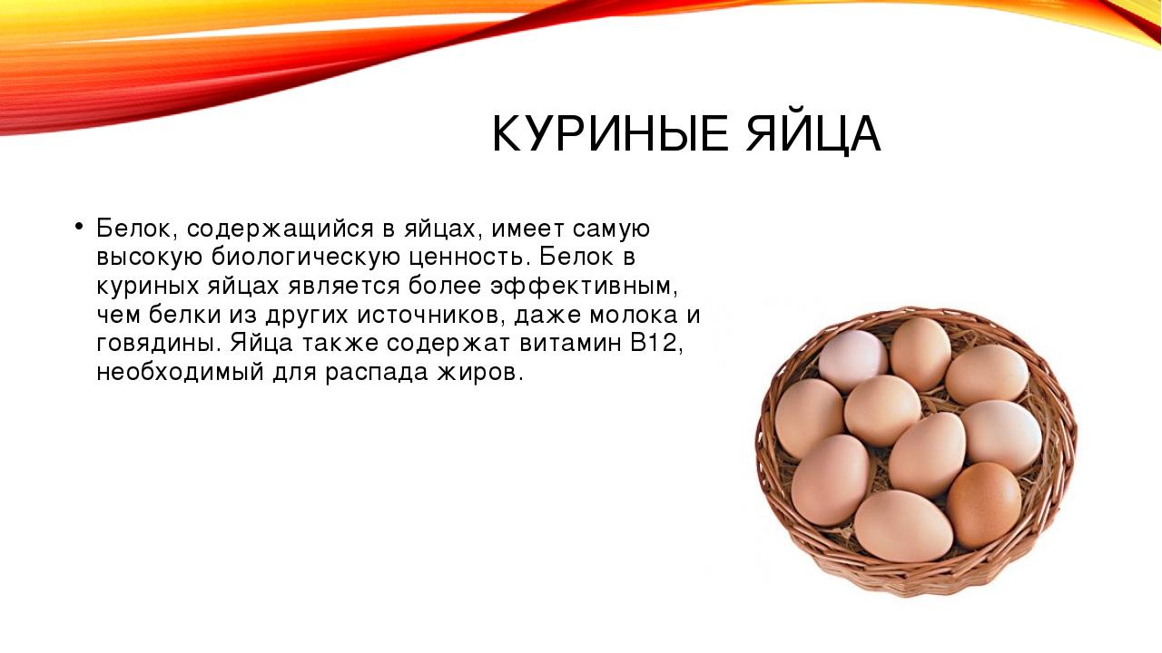КУРИНЫЕ ЯЙЦА Белок, содержащийся в яйцах, имеет самую высокую биологическую ц...