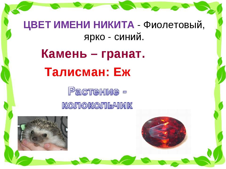 ЦВЕТ ИМЕНИ НИКИТА- Фиолетовый, ярко - синий.  Талисман: Еж Камень – гранат.