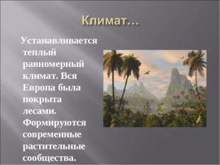 Устанавливается теплый равномерный климат. Вся Европа была покрыта лесами. Ф