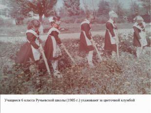 Точной клу Учащиеся 6 класса Ручьевской школы (1985 г.) ухаживают за цветочно