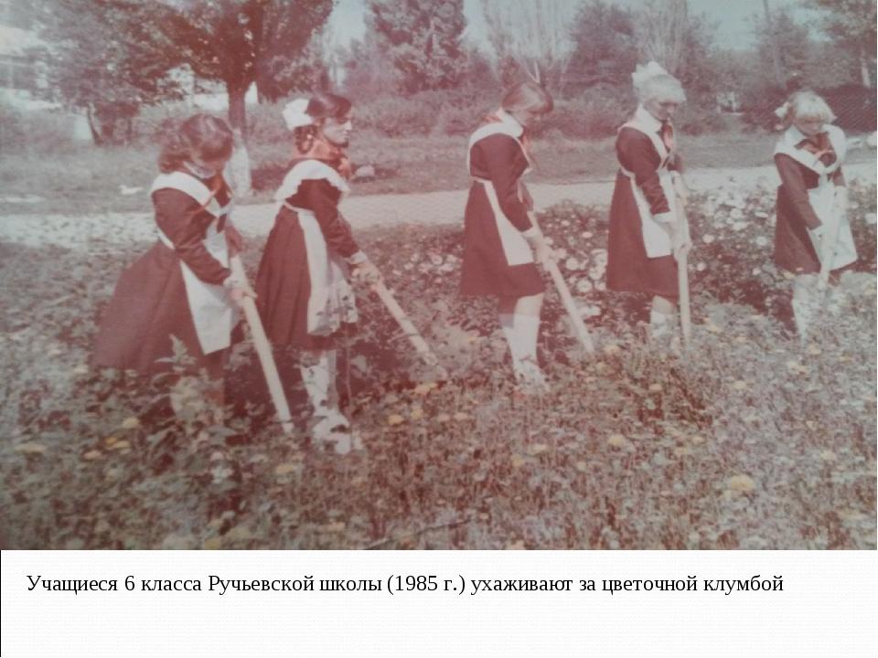 Точной клу Учащиеся 6 класса Ручьевской школы (1985 г.) ухаживают за цветочно...