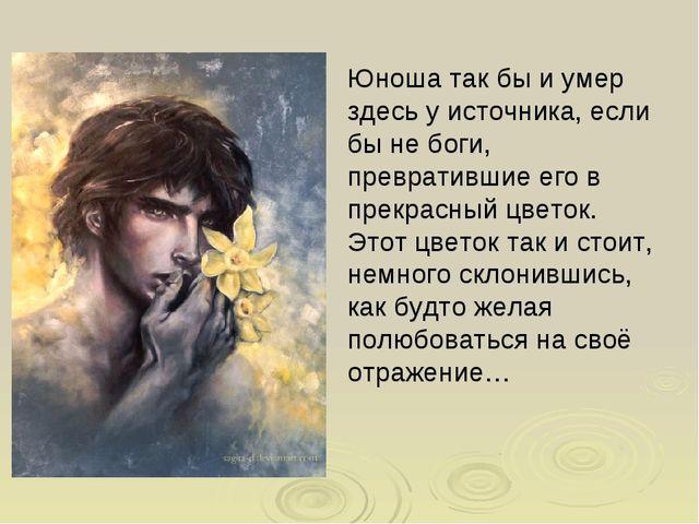 Юноша так бы и умер здесь у источника, если бы не боги, превратившие его в п...