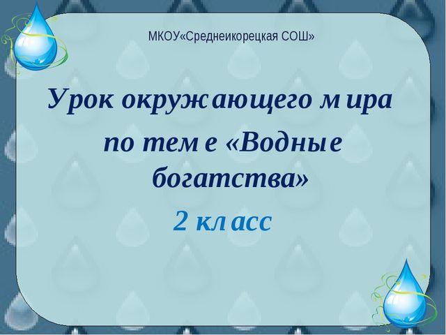 Урок окружающего мира по теме «Водные богатства» 2 класс МКОУ«Среднеикорецкая...