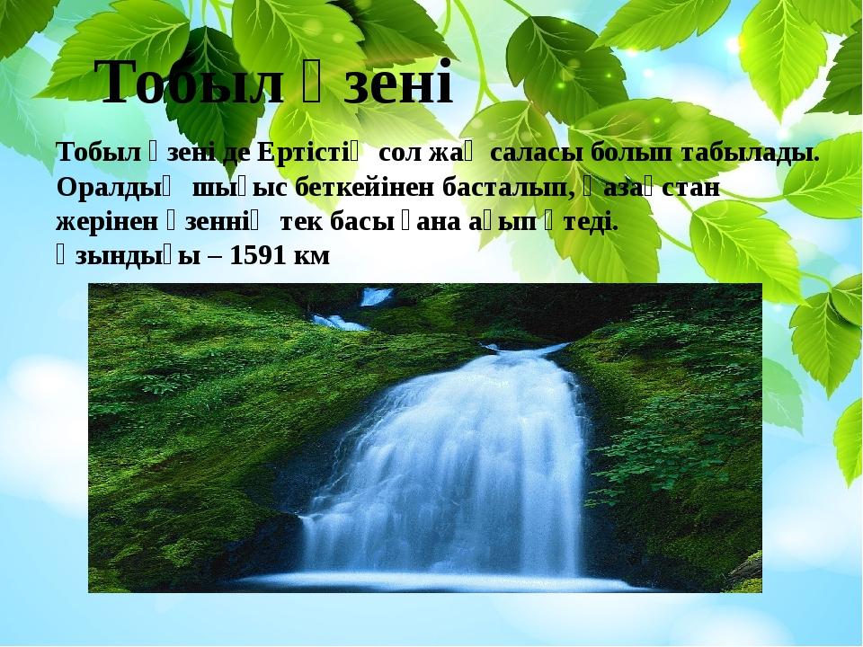Тобыл өзені Тобыл өзені де Ертістің сол жақ саласы болып табылады. Оралдың шы...