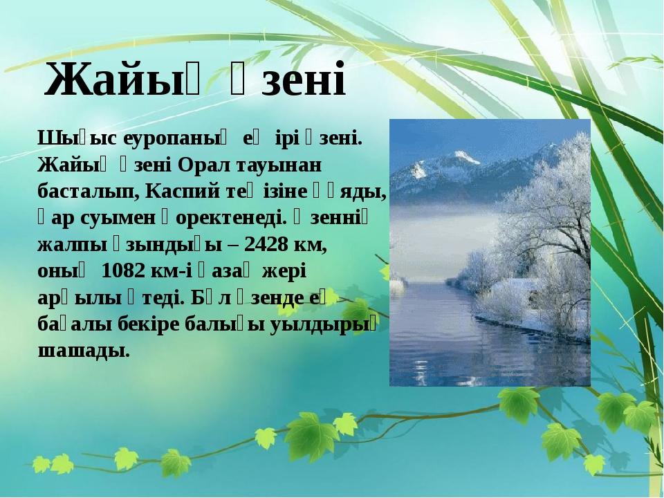 Жайық өзені Шығыс еуропаның ең ірі өзені. Жайық өзені Орал тауынан басталып,...