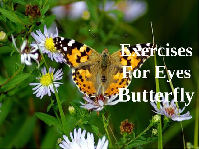 Exercises For Eyes Butterfly