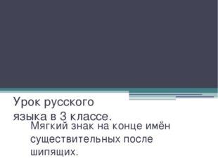 Мягкий знак на конце имён существительных после шипящих. Урок русского языка