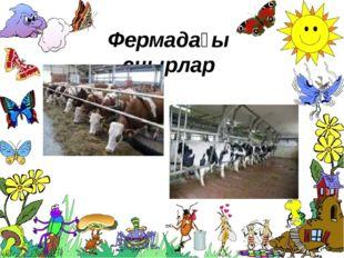 Фермадағы сиырлар ProPowerPoint.Ru
