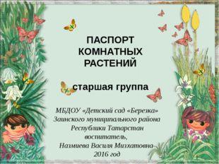 ПАСПОРТ КОМНАТНЫХ РАСТЕНИЙ старшая группа МБДОУ «Детский сад «Березка» Заинск