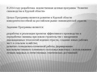 """В 2014 году разработана ведомственная целевая программа """"Развитие свиноводст"""