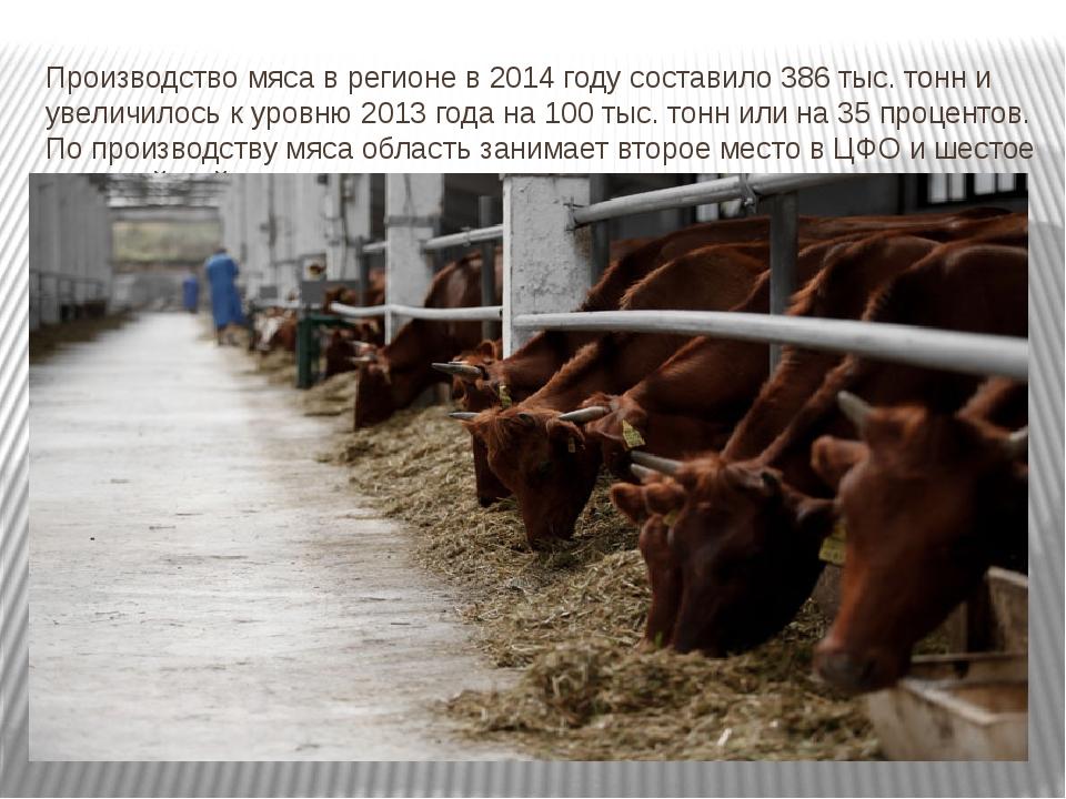 Производство мяса в регионе в 2014 году составило 386 тыс. тонн и увеличилось...