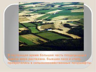 В настоящее время большая часть плодородных земель мира распахана. Бывшие лес