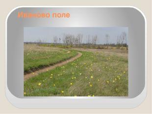 Иваново поле